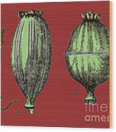 Opium Harvesting Wood Print