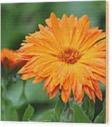 Orange And Green II Wood Print