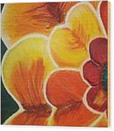 Orange Blossom Wood Print