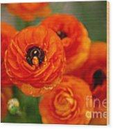 Orange Bulbs Wood Print