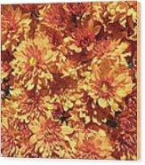 Orange Chrysanthemums Wood Print