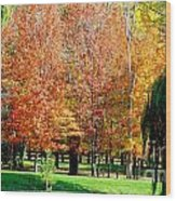 Orange Colored Trees Wood Print