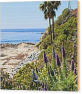 Orange County California Coastline Photo Wood Print