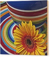 Orange Daisy With Plate And Vase Wood Print