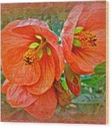 Orange Hibiscus Flowers Wood Print