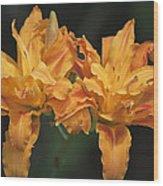 Orange Kwanso Daylily Pair Wood Print