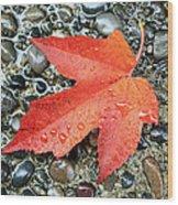 Orange Leaf Wood Print