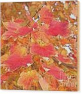 Orange Leaves 2 Wood Print