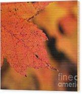 Orange Maple Leaf Wood Print by Chris Hill