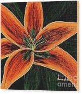 Orange Oriental Lily Wood Print