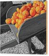 Orange Pumpkin Harvest Wood Print