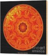 Orange Rose Kaleidoscope Under Glass Wood Print