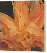 Orange Ruffles Wood Print