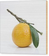 Orange Satsuma Wood Print by Bernard Jaubert
