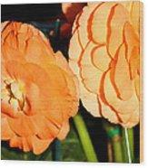 Orange Tuberous Begonias Wood Print