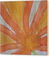 Oranje Bloemblaadje Wood Print