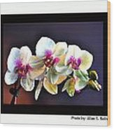 Orchid 6 Wood Print