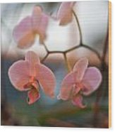 Orchid Gathering Wood Print