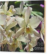 Orchid Iwanagara 9854 Wood Print
