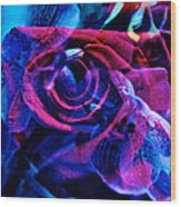 Orchid Rose Wood Print