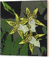 Orchid Trilogy Wood Print