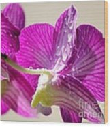 Orchids And Raindrops Wood Print by Theresa Willingham