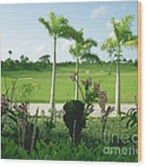 Orchids At Iberostar Golf Course In Punta Cana Dr Wood Print