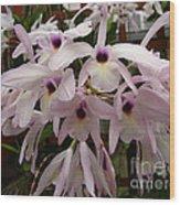 Orchids Beauty Wood Print