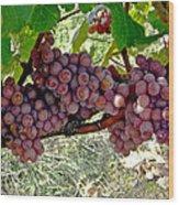 Oregon Burgundy Wood Print