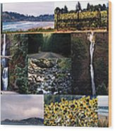 Oregon Collage From Sept 11 Pics Wood Print