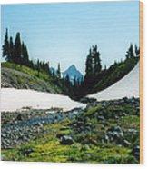 Oregon Hike Wood Print