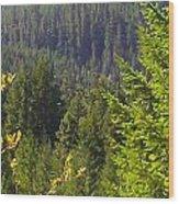 Oregon Trees Wood Print