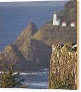 Oregon, United States Of America Heceta Wood Print