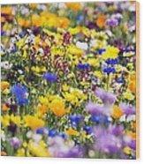Oregon Wildflowers Wood Print