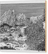 Organ Mountain Wintertime Wood Print by Jack Pumphrey