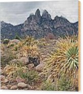 Organ Mountains  Sotol Plants Wood Print