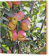 Organic Apples In A Tree Wood Print