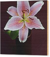 Oriental Lilly Wood Print