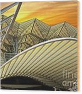 Oriente Station Wood Print by Carlos Caetano