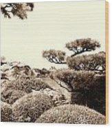 Orlando Oriental Wood Print