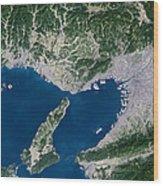 Osaka, Satellite Image Wood Print by Planetobserver
