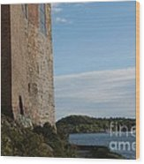 Oslo Castle And Harbor Wood Print