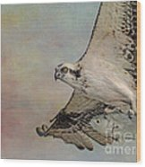 Osprey And Fish Wood Print