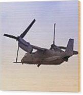 Osprey In Flight Iv Wood Print