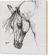 Ostragon Polish Arabian Horse 1 Wood Print