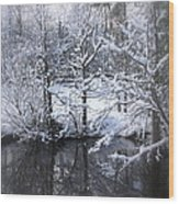 Our Pond In The Snow Wood Print