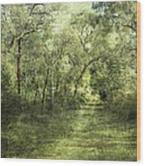 Outback Bush Wood Print