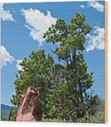 Outcropping Wood Print