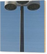 Outdoor Lamp Post Wood Print