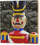 Outdoor Toy Soldier Wood Print